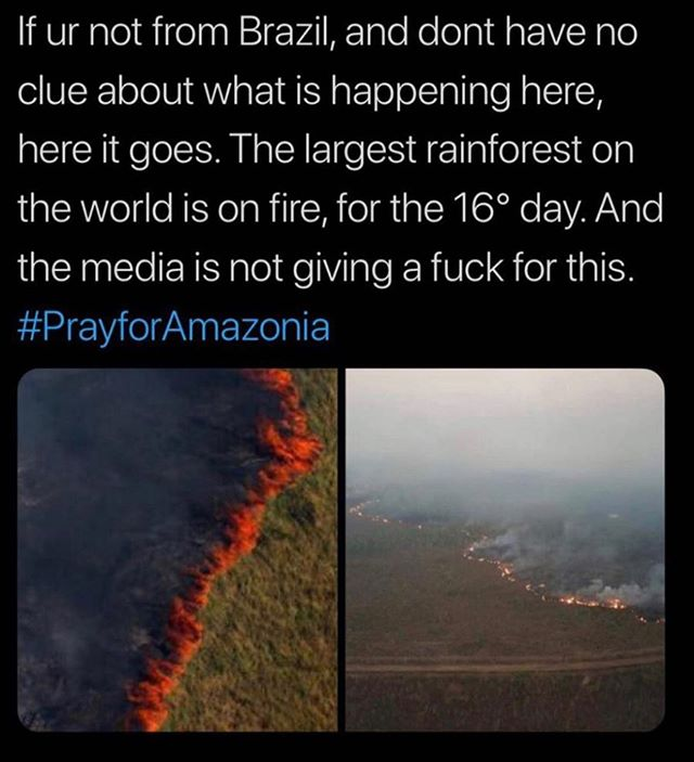 The Amazon has been burning for almost 3 weeks, and no one is talking about it. 🤬 This happened either due to agricultural activities or deforestation, which are pretty much the same thing tbh since deforestation occurs to make land clear for agriculture (typically animal agriculture, yes that includes growing soy to feed animals breed for slaughter here in the West!!) 🤬 Tonight I'm angry. I'm angry that this was allowed to happen. I'm angry that this has happened since the people of Brazil elected a 🤬 of a president who accelerated both agriculture activities and deforestation in the Amazon since he was elected. And yes the people knew this would happened, it was something he boasted about doing during his political rallies!!!! One of his selling points if you can believe. 🤬 I'm angry, but my heart is also broken to think of the animals being burnt alive, with no where to escape. Heartbroken thinking of the unique ecosystem being lost. Heartbroken for the Amazonian tribes who are being pushed even further out of their lands, losing their precious homes. I actually weep for them. We all should. 🤬 I try to stay positive as much as I can usually. For the sake of trying to encourage others that change is possible, that we can make the world a better place. 🤬 But tonight, I'm mostly angry and hopeless. My heart is broken. 🤬 The most I can do from here is #prayforamazonia That there will be something left of it 😞