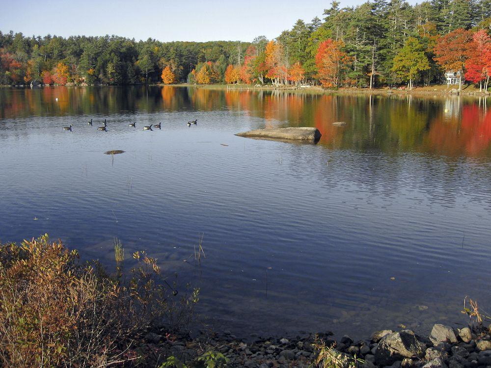 Alamoosook-Lake.jpg