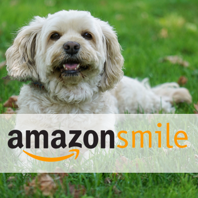 amazon smiles soul mutt