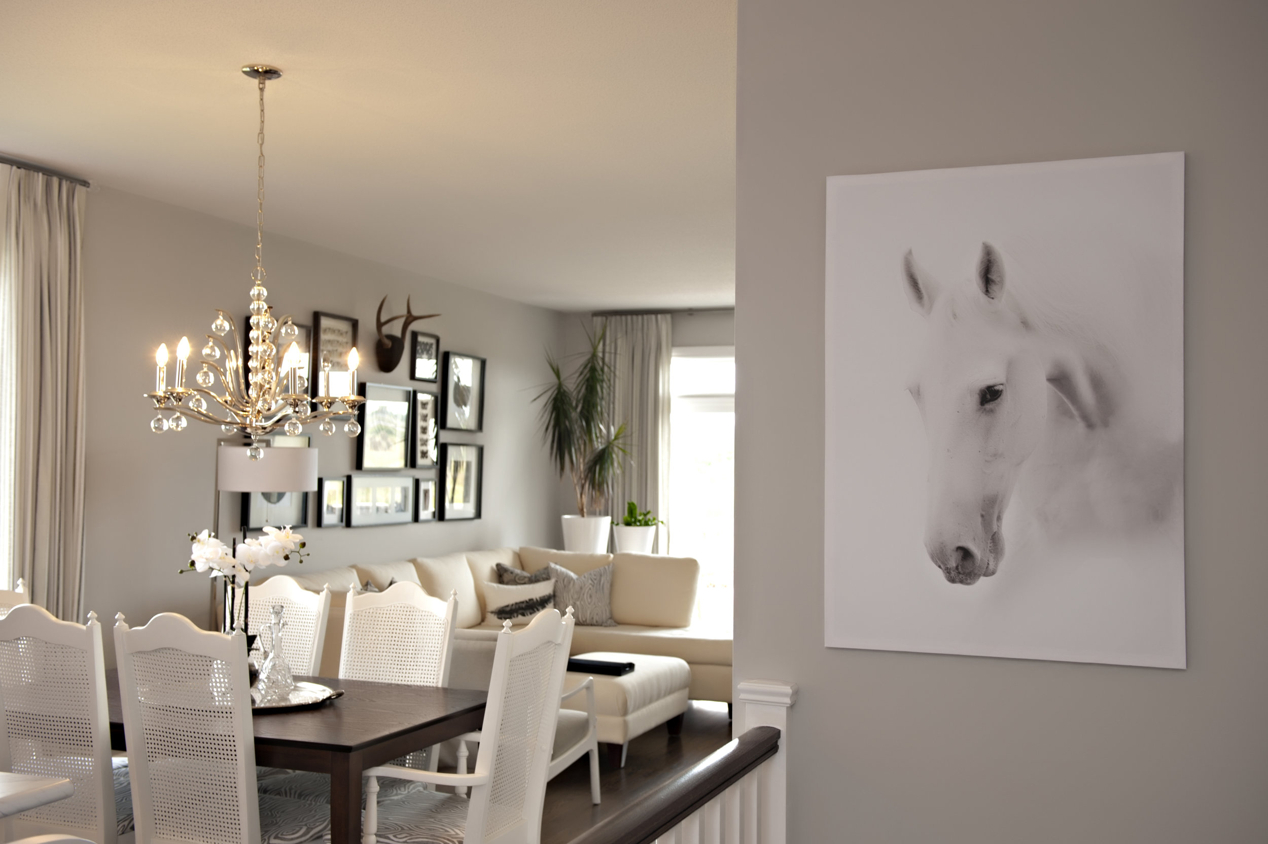 Interior-Design-Kitchen-Horse-Artwork