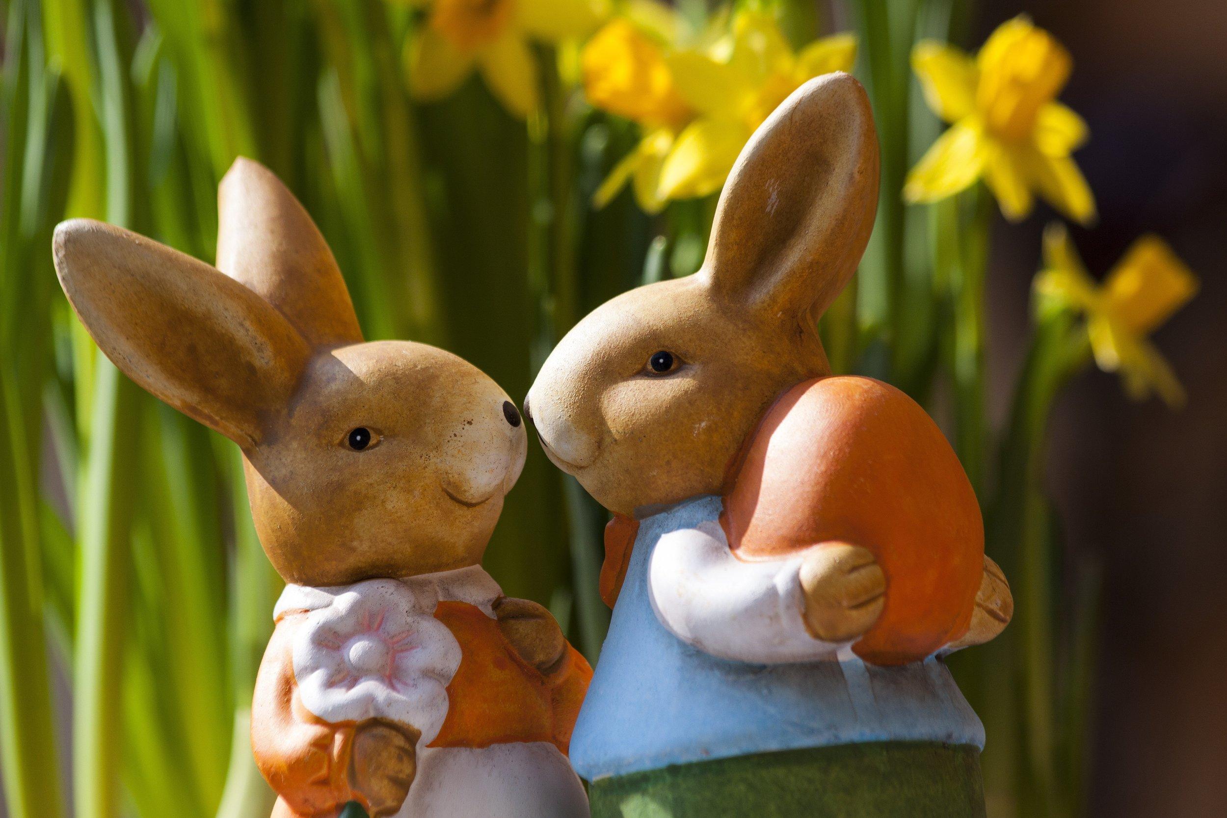 easter bunnies kissing noses royalty free.jpg