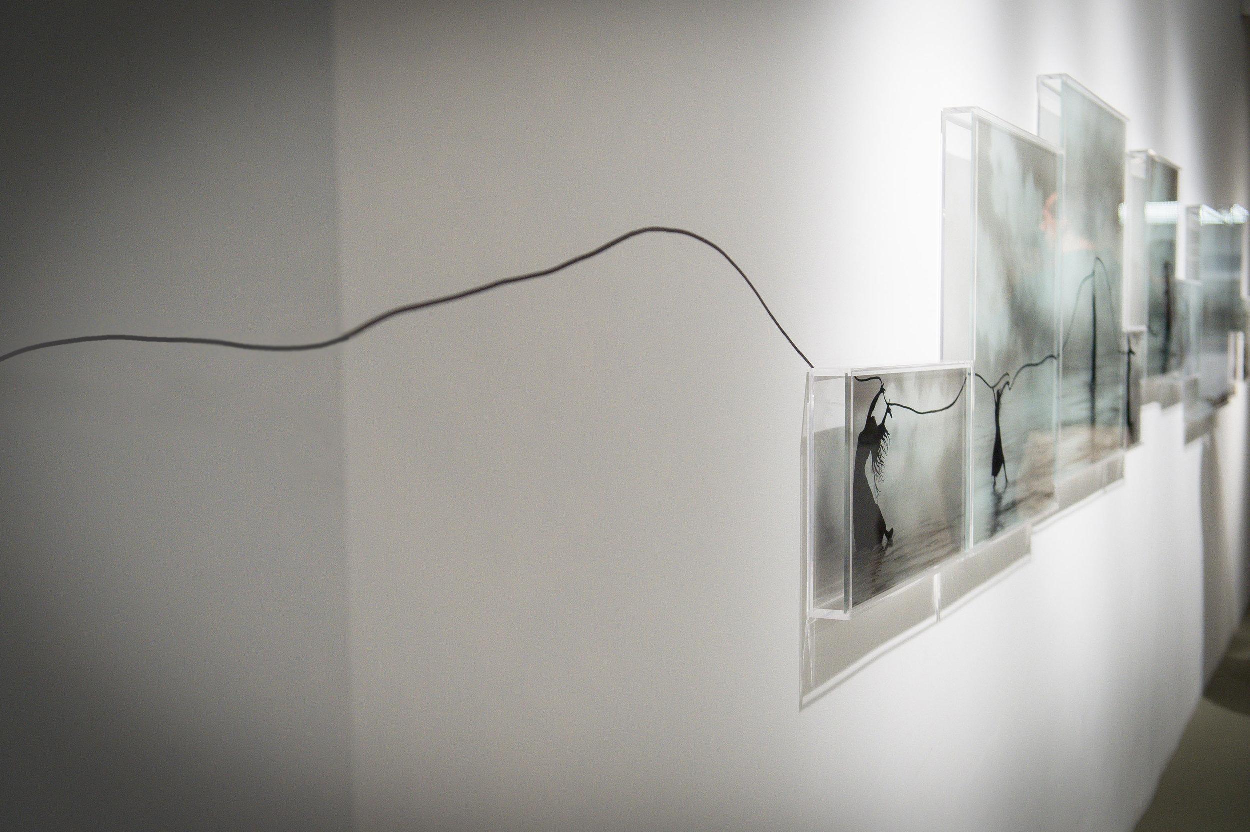 2015 Exposição Galeria Eduardo Fernandes 4.JPG