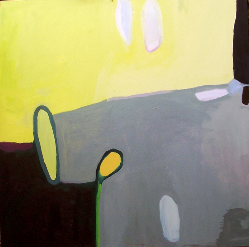equivalencias-galeria-penteado-campinas-abril-2011-184-800x800r.jpg