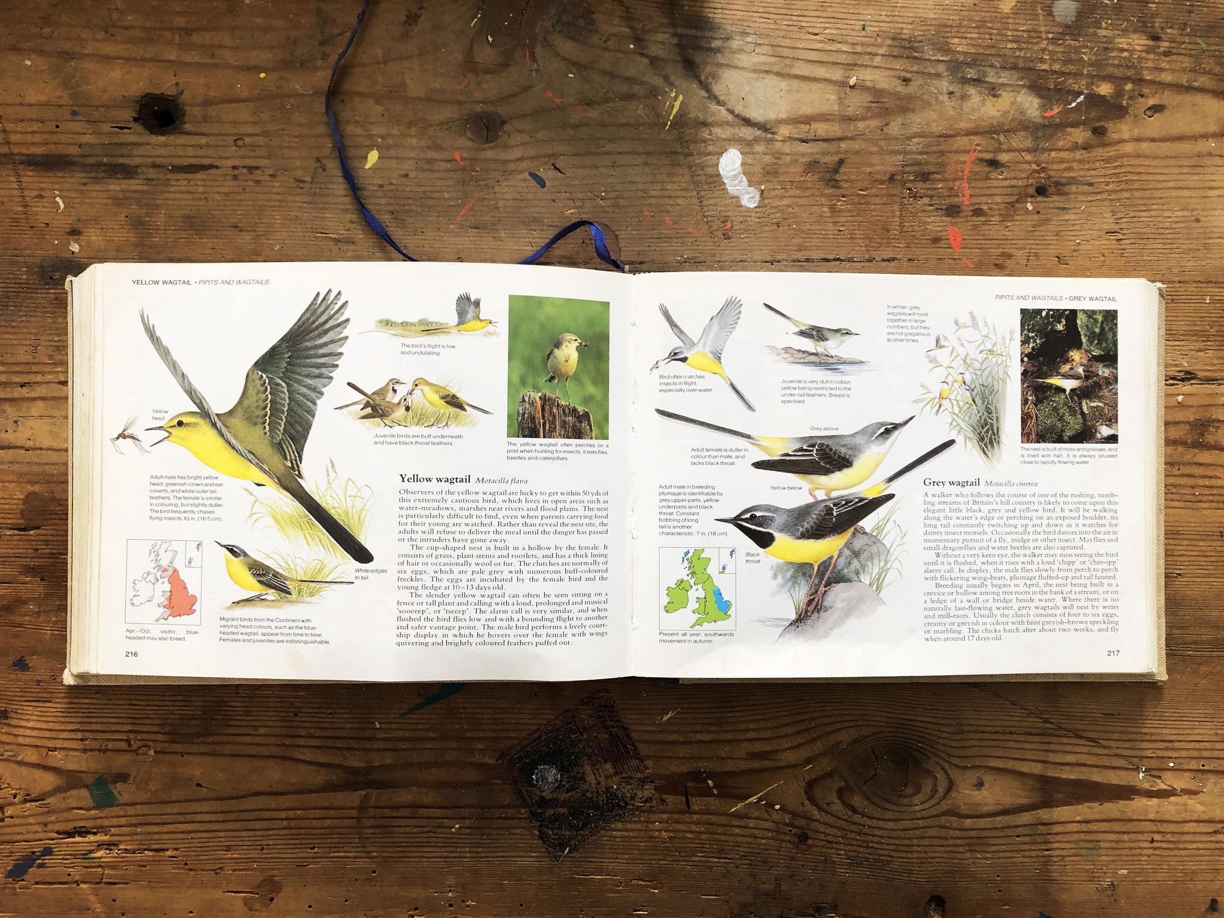 Readers Digest book.jpg