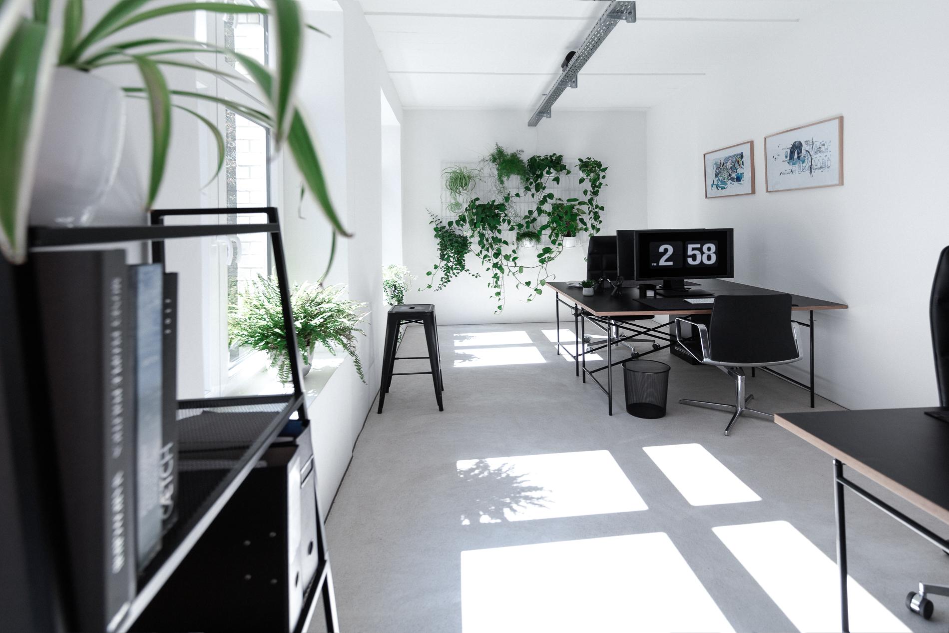 StudioMorrow_Web_1.jpg