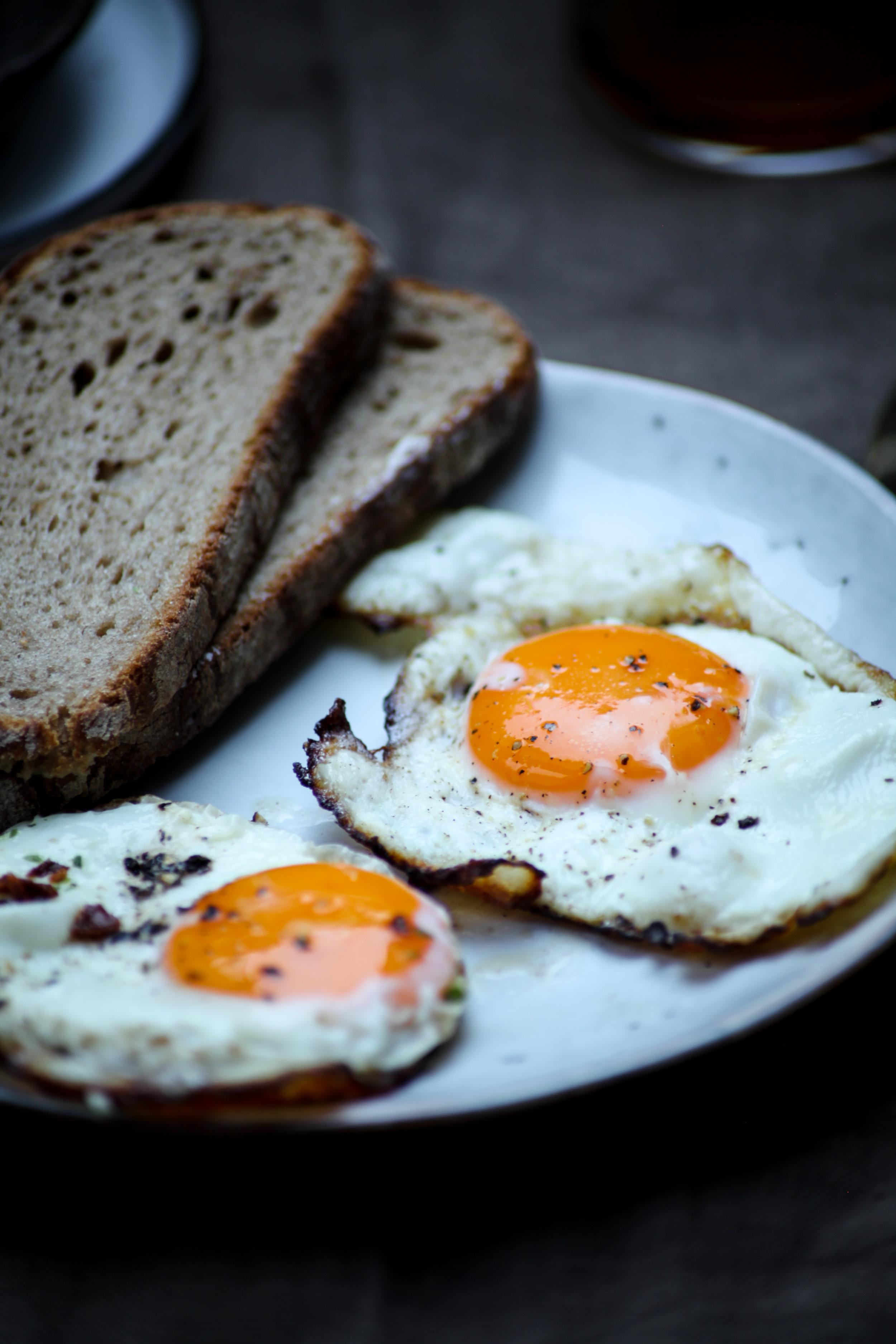 EggShoot1-115-2.jpg