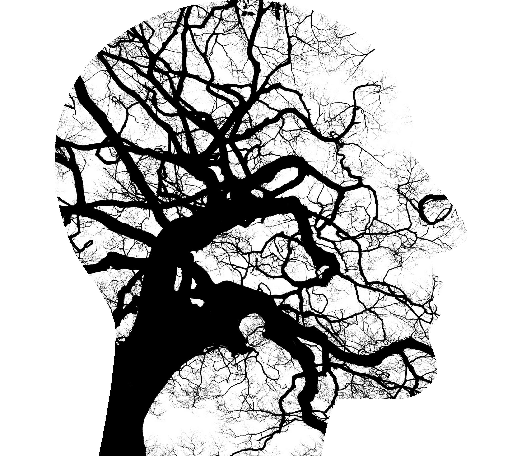 mental-health-2313430.jpg