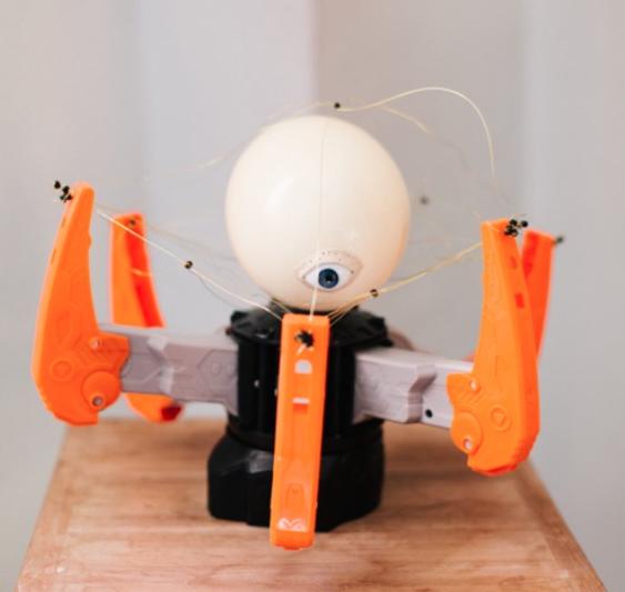 Exorbitant Sight, 2016  Mixed media: electronic robot, brass wire, glass eye, egg shell  31 x 37 x 37cm