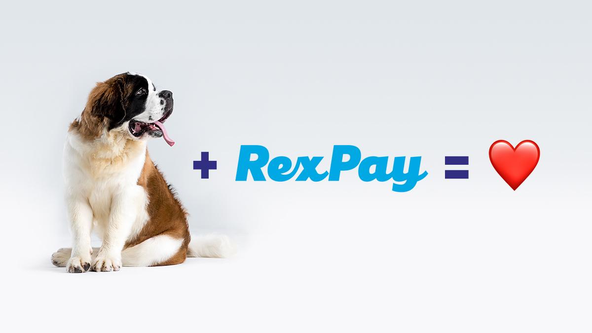 St. Bernard dog equation graphic.jpg