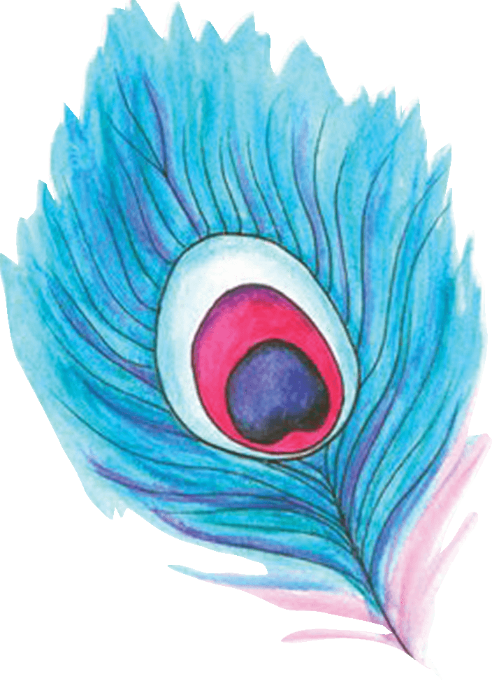 feather color transparent.png
