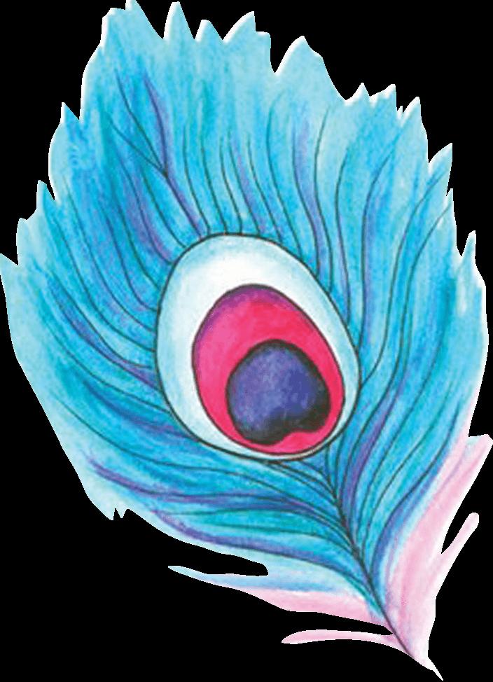 feather color transparent.png