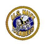 U.S. NavyVeteran - (1972-76)