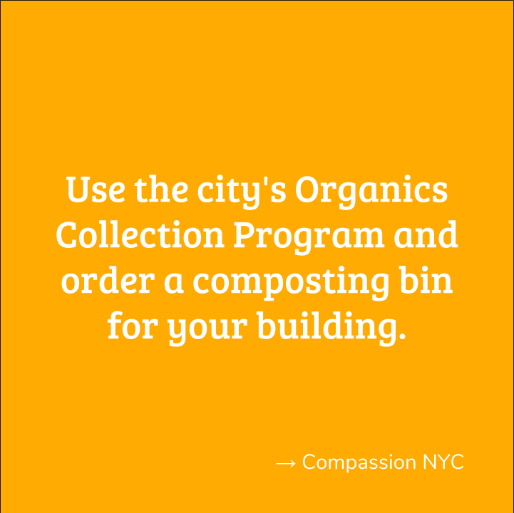 CompassionNYC1.png