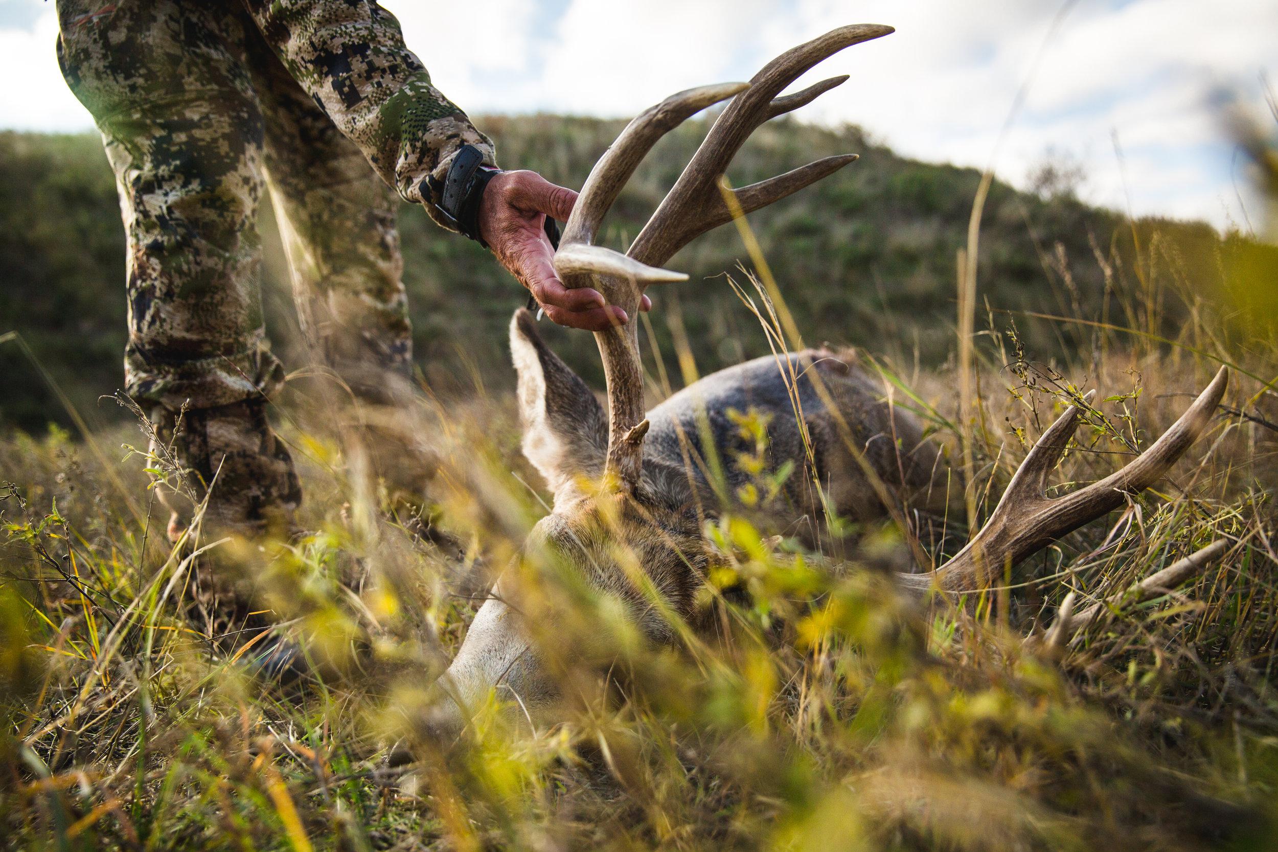 outback outdoors - NE deer - 2017