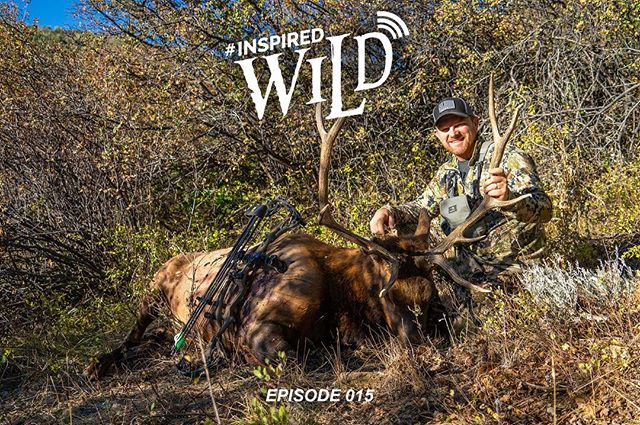 #InspiredWild Podcast - EP. 015 - Colorado Elk 2018 - Part 3 - The Conclusion  is now LIVE  Be sure to Subscribe on @itunes , @podbean and @stitcherpodcasts  On the ride back home, @trevonstoltzfus , Aaron Ray, and @tannervernon recap their Colorado elk hunt, plagued by dry, hot and windy conditions the bulls remained predominately silent, but by changing up their hunting tactics they were able to successfully harvest a bull on the last night. Hear how it all unfolded and the sleepless night that led up to an easy recovery of a great Colorado bull. @qrsoutdoors  #sickforit #hoyttaggedout #builtforthewild #conquermore #Wasparchery #MontanaDecoy #phelpsgamecalls  @sitkagear | @yeti | @hoytbowhunting | @mtnops | @wasparchery | @montanadecoy | @phelpsgamecalls
