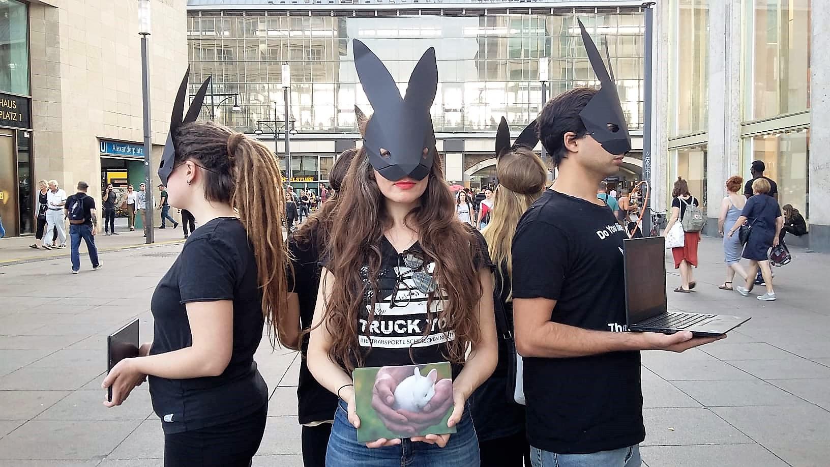 bunny 8.jpg