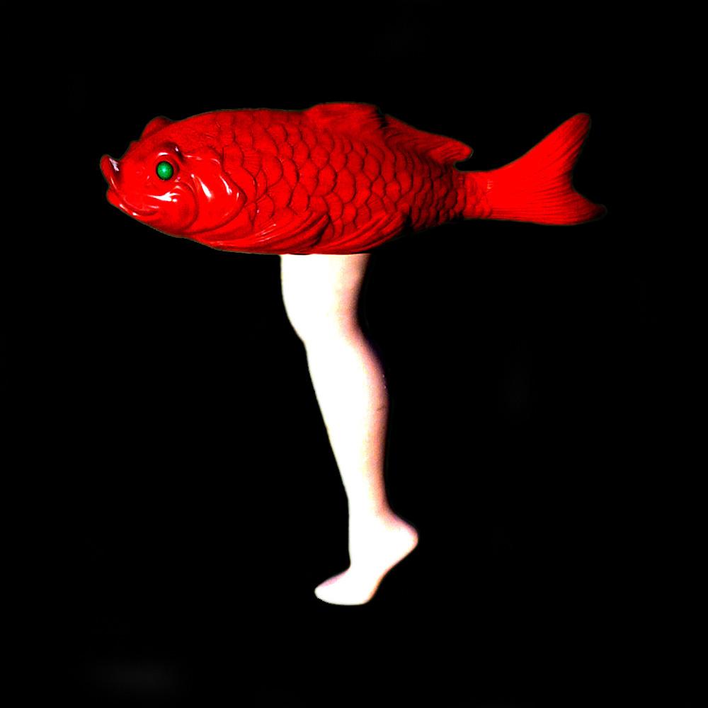 legfish2.jpg