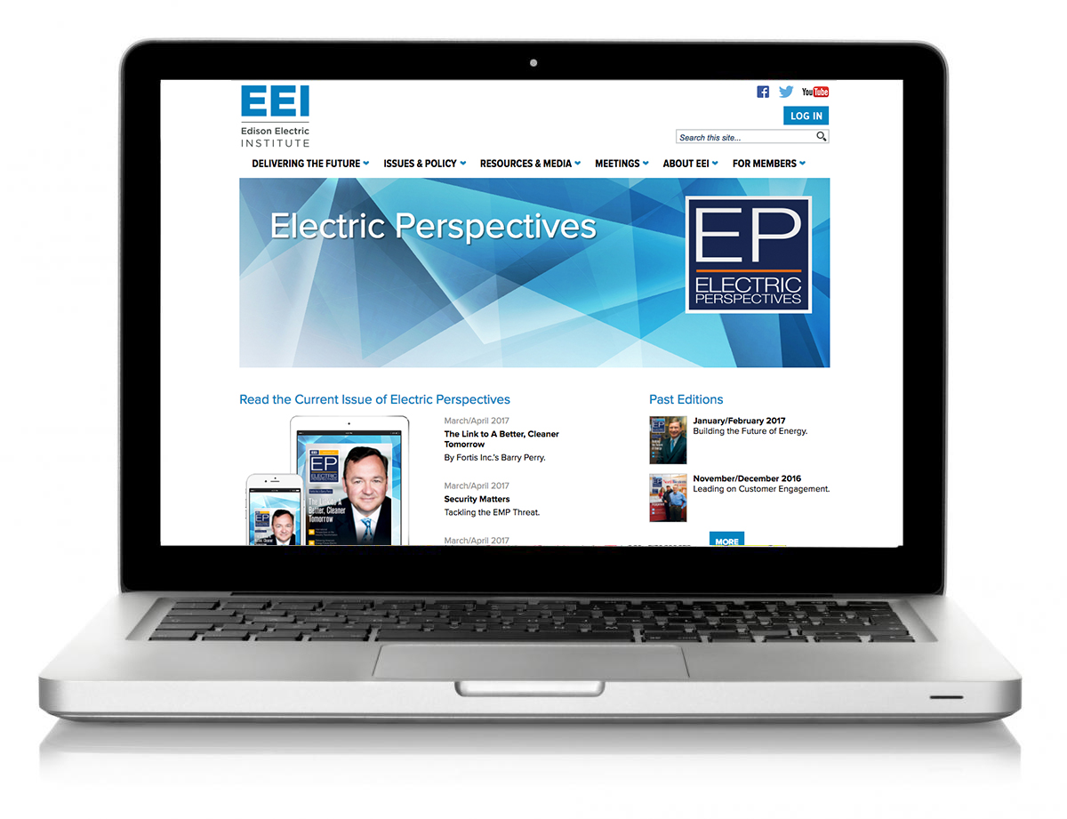 EEI_.org_1 copy.jpg