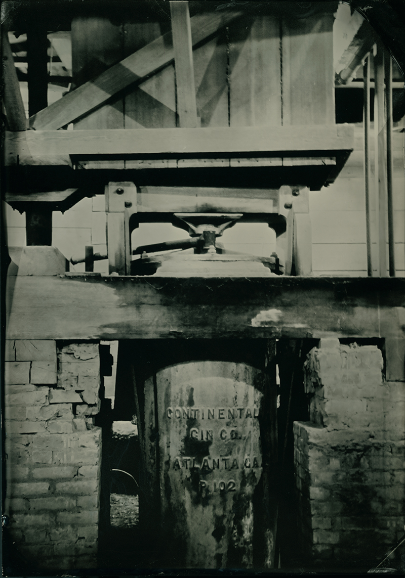 Tin type of the cotton gin invented by Eli Whitney in 1793, Magnolia Plantation, 2014, Jeanine Michna-Bales. The yield of raw cotton doubled each decade after 1800.   Thereby fueling the growth of slavery.   While it was true that the cotton gin reduced the labor of removing seeds, it did not reduce the need for slaves to grow and pick the cotton. Cotton growing became so profitable for the planters that it greatly increased their demand for both land and slave labor. In 1790 there were six slave states; in 1860 there were 15.