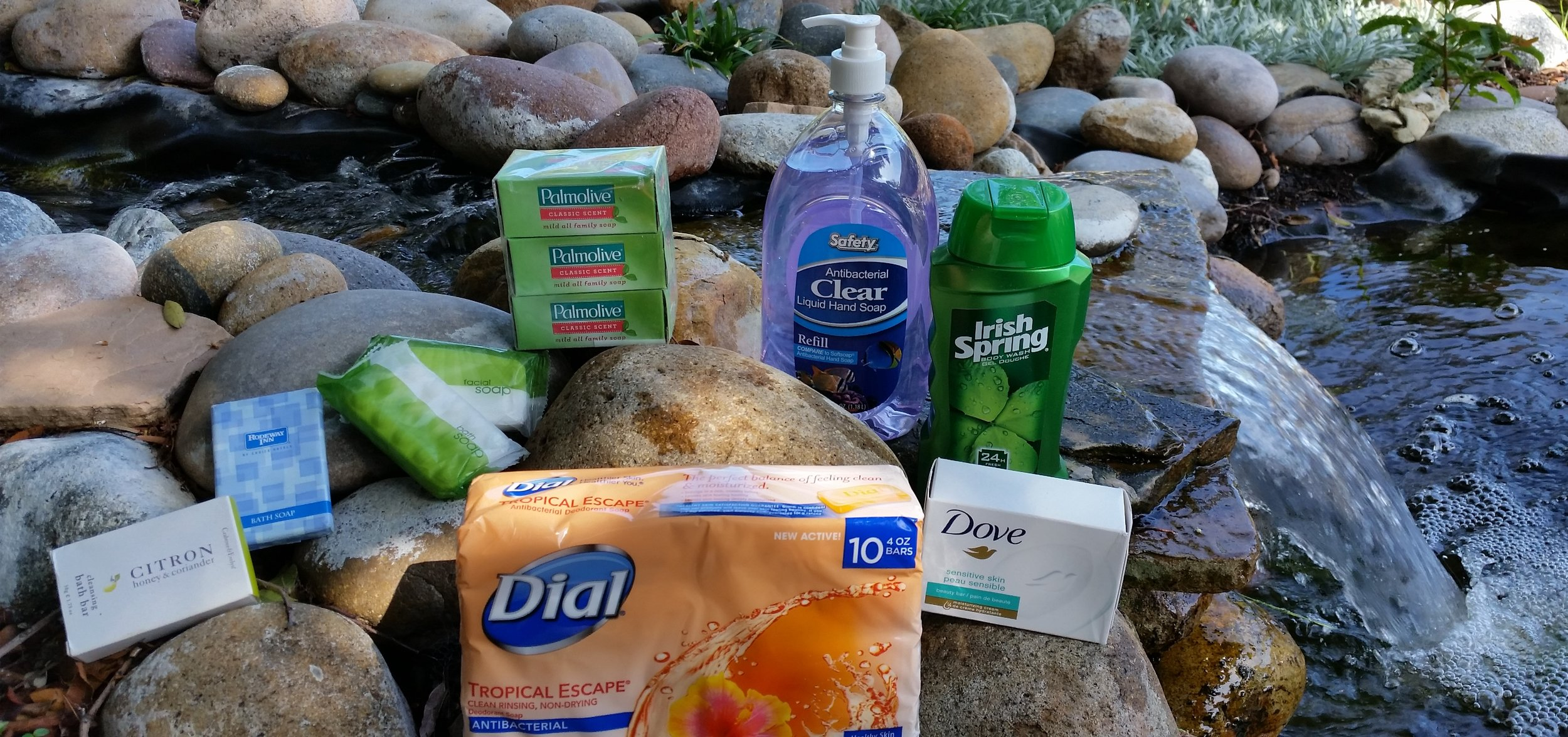 Hand Soap and Body Wash.jpg