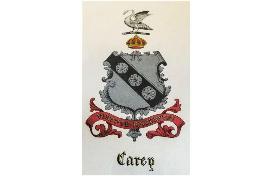 David Carey - Carey DH Investments managing partner