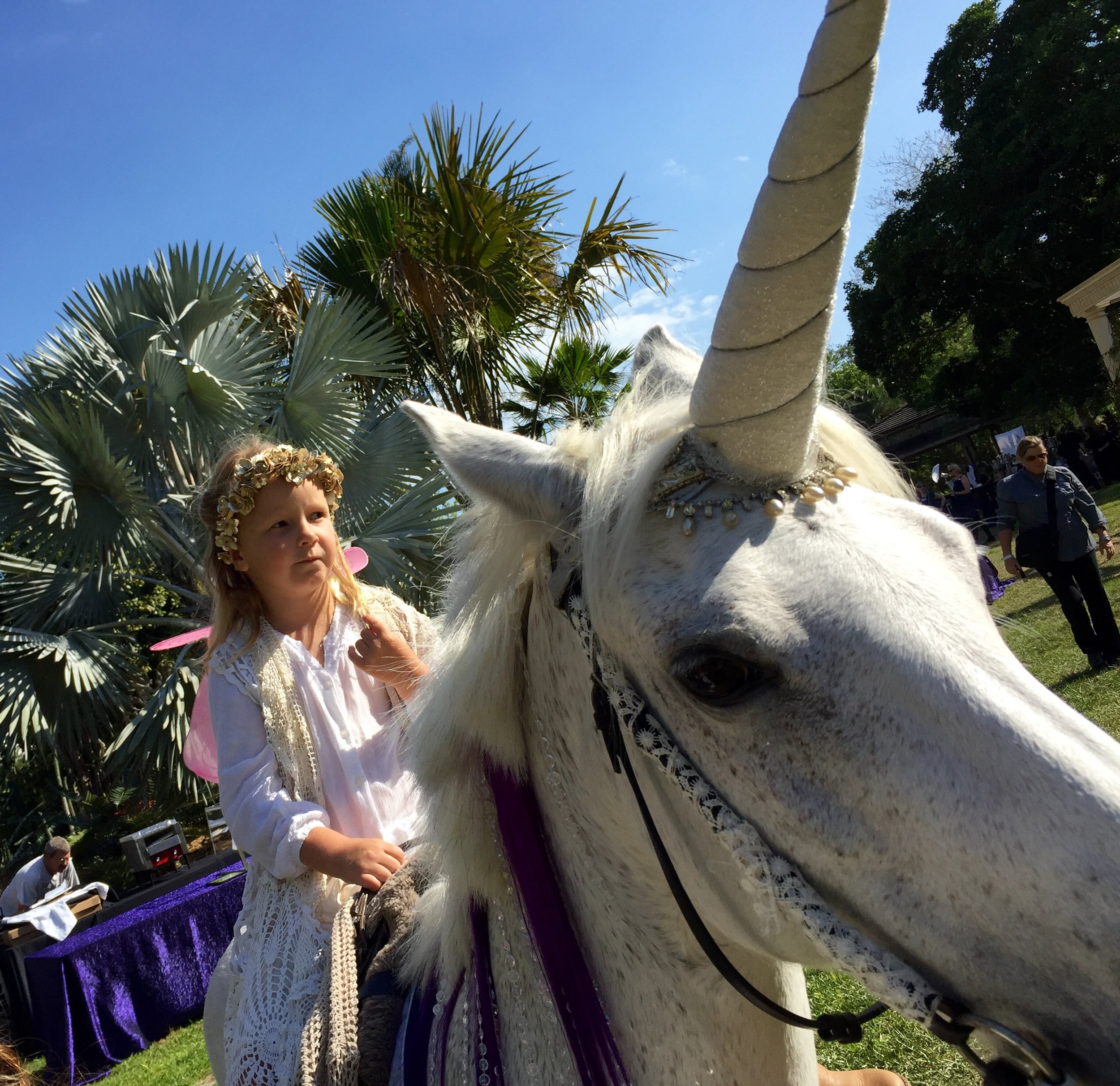 Unicorns & Horses for Events