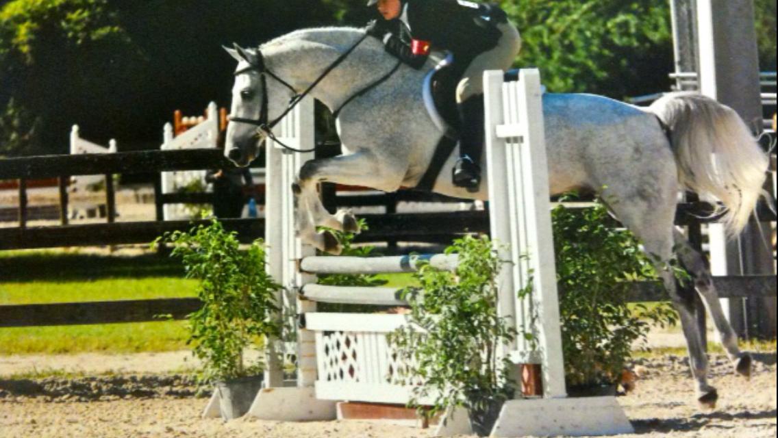 Equestrian Event Management