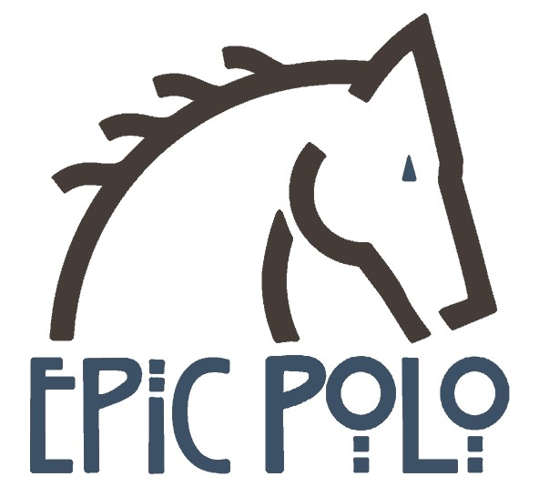 Epic Polo Logo Steel and Espresso.jpg