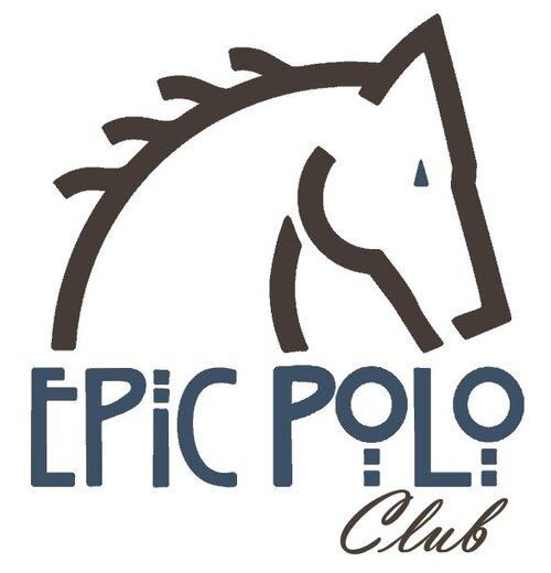 Epic Polo CLUB 1 Logo Steel and Espresso.jpg