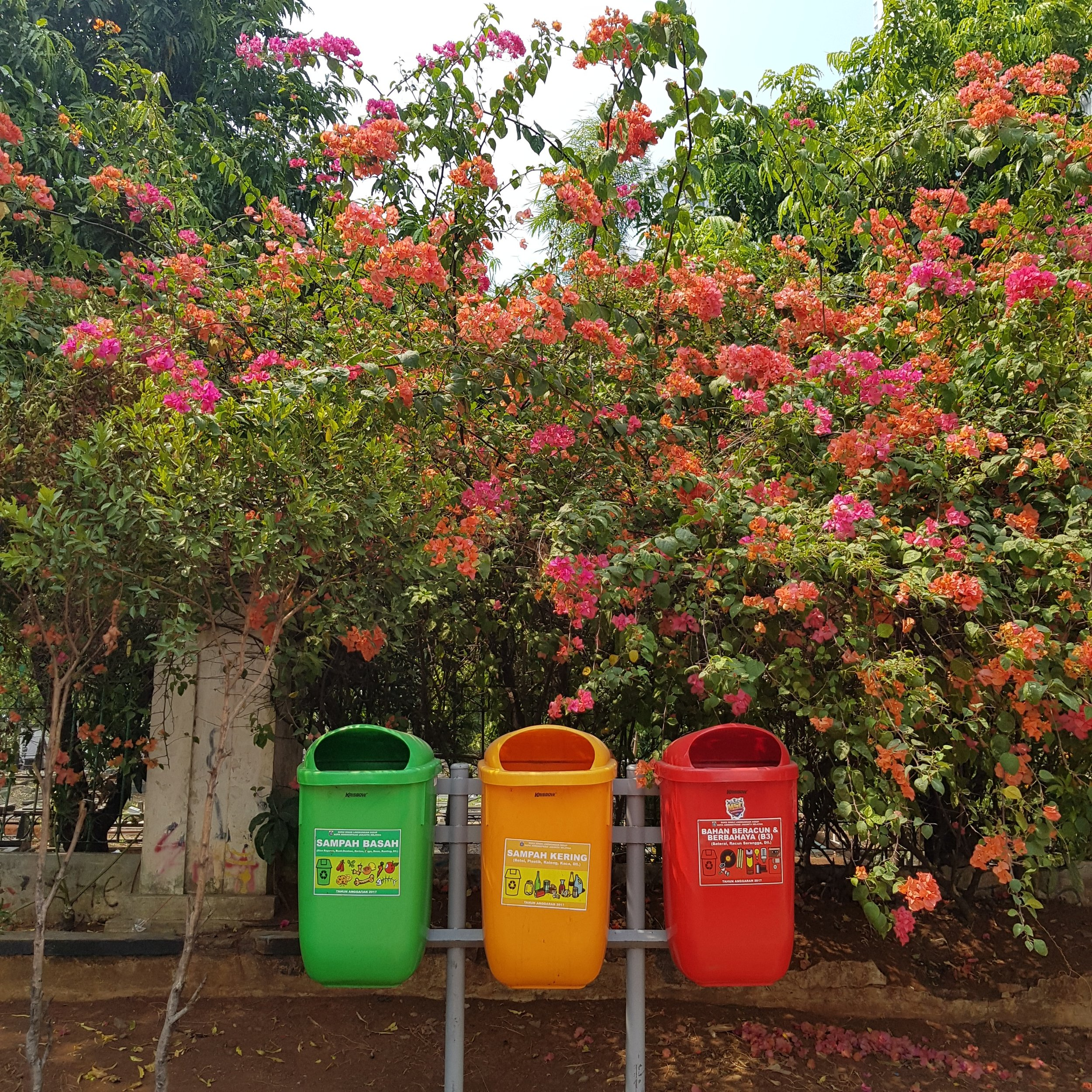 recycling bins in Indoensia. PC: Unsplash