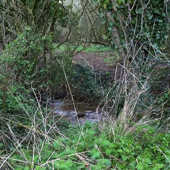 The Pudding Brook between a field and a small patch of land near the roadworks.