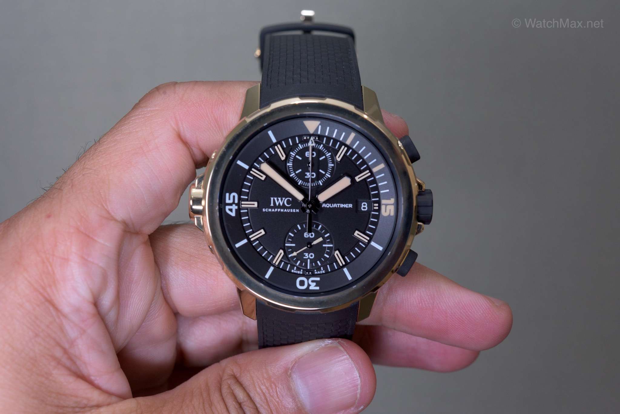 "IWC Aquatimer ""Charles Darwin"" bronze diving watch"