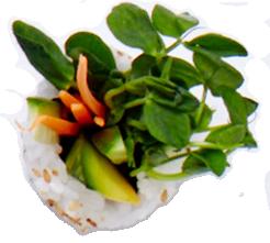 Sushi2.png