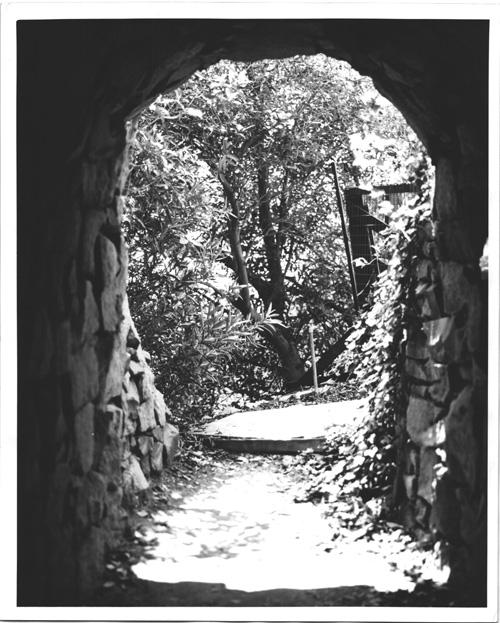 Monkey House Tunnel