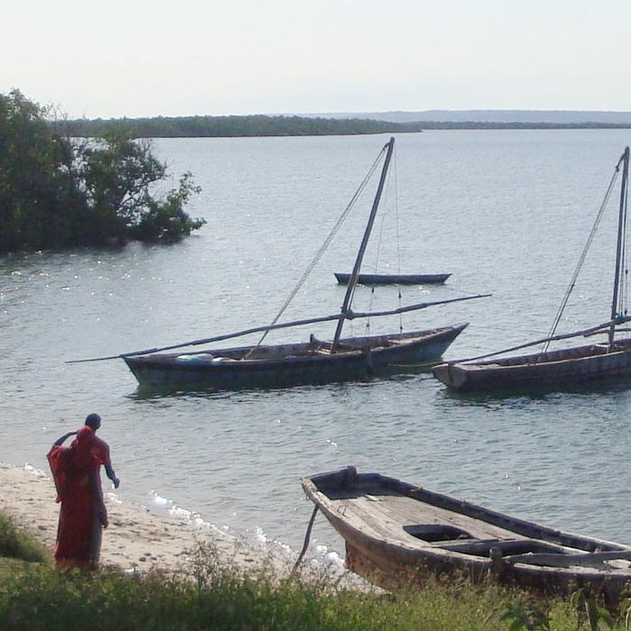Fishing boats along the shores of Kilwa Kisiwani, Tanzania