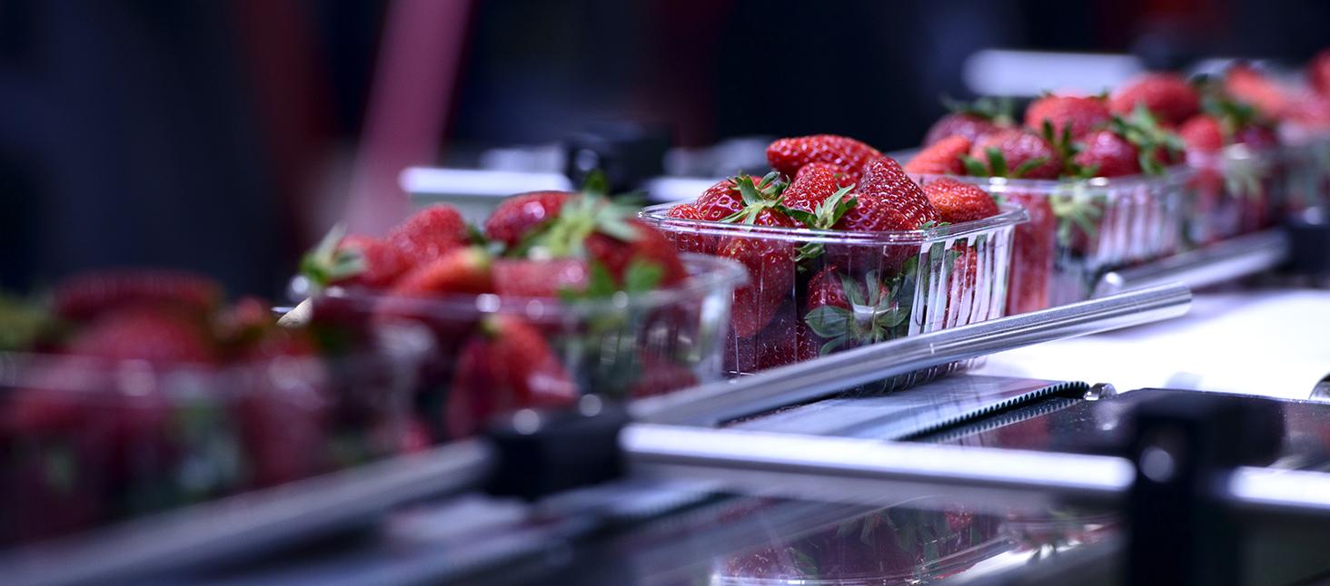 Better Fruit& Veg Solutions -