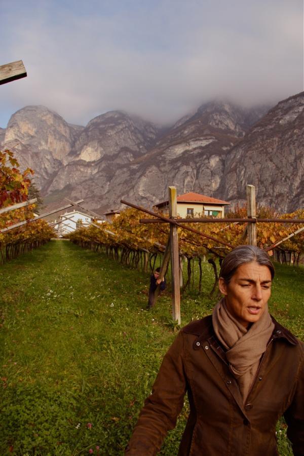 Elisabetta Foradori in her Teroldego vineyards. Photo by Alex Finberg, courtesy of louisdressner.com