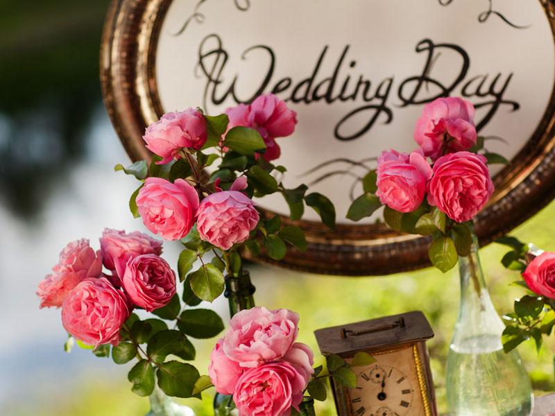Wedding_day.jpg