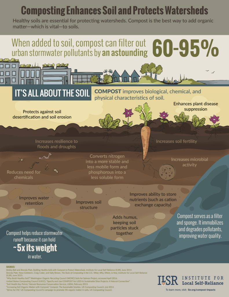 Compost-Infographic-18x23-Pg2-791x1024.jpg