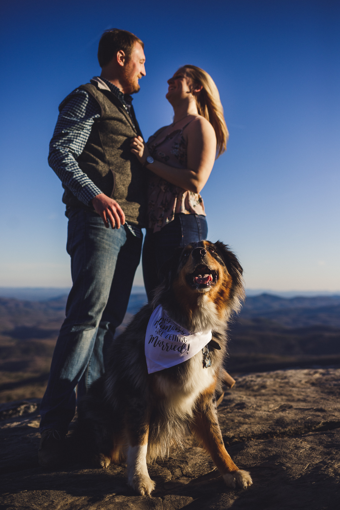 dog engagement photos, rough ridge overlook, charlotte engagement session, charlotte wedding photographer, rough ridge engagement session, north carolina wedding photographer