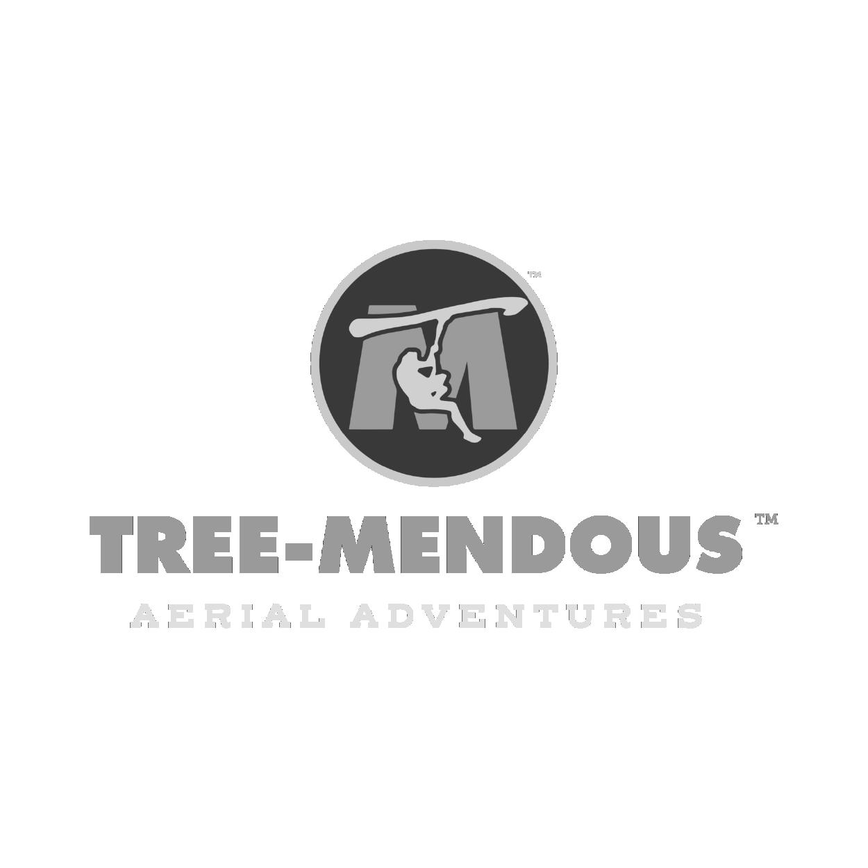 Tree-Mendous Aerial Adventures