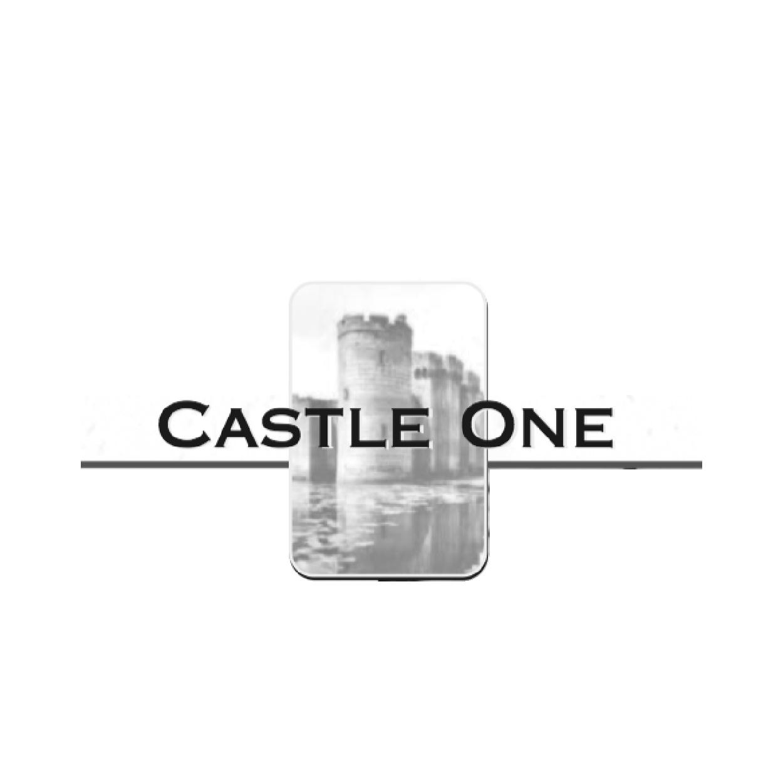 CastleOne Casting