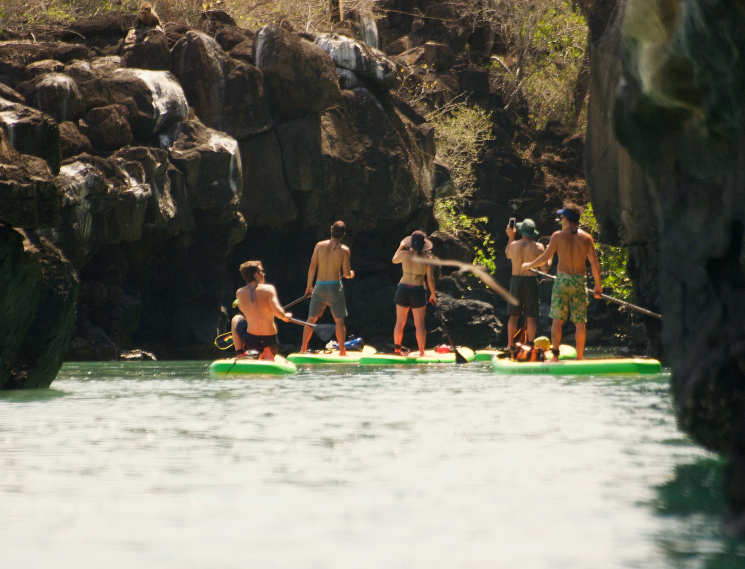 - Paddle among the Lava Tubes and channels where the Geology of this place will blow your mind away.