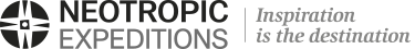 stand up paddle board in galapagos reservations tours flights hotel neotropic-logo.png