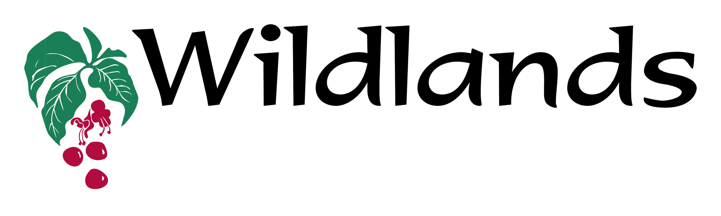 Wildlands No Tag Line 21.09.17.jpg