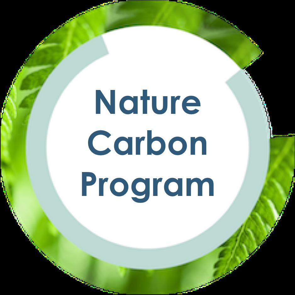 Nature Carbon Program.png
