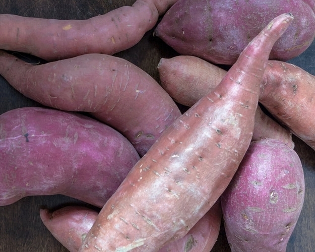 Organic sweet potato for gluten-free, grain-free, Cape Cod Muffins. Sweetened with fruits and vegetables only.