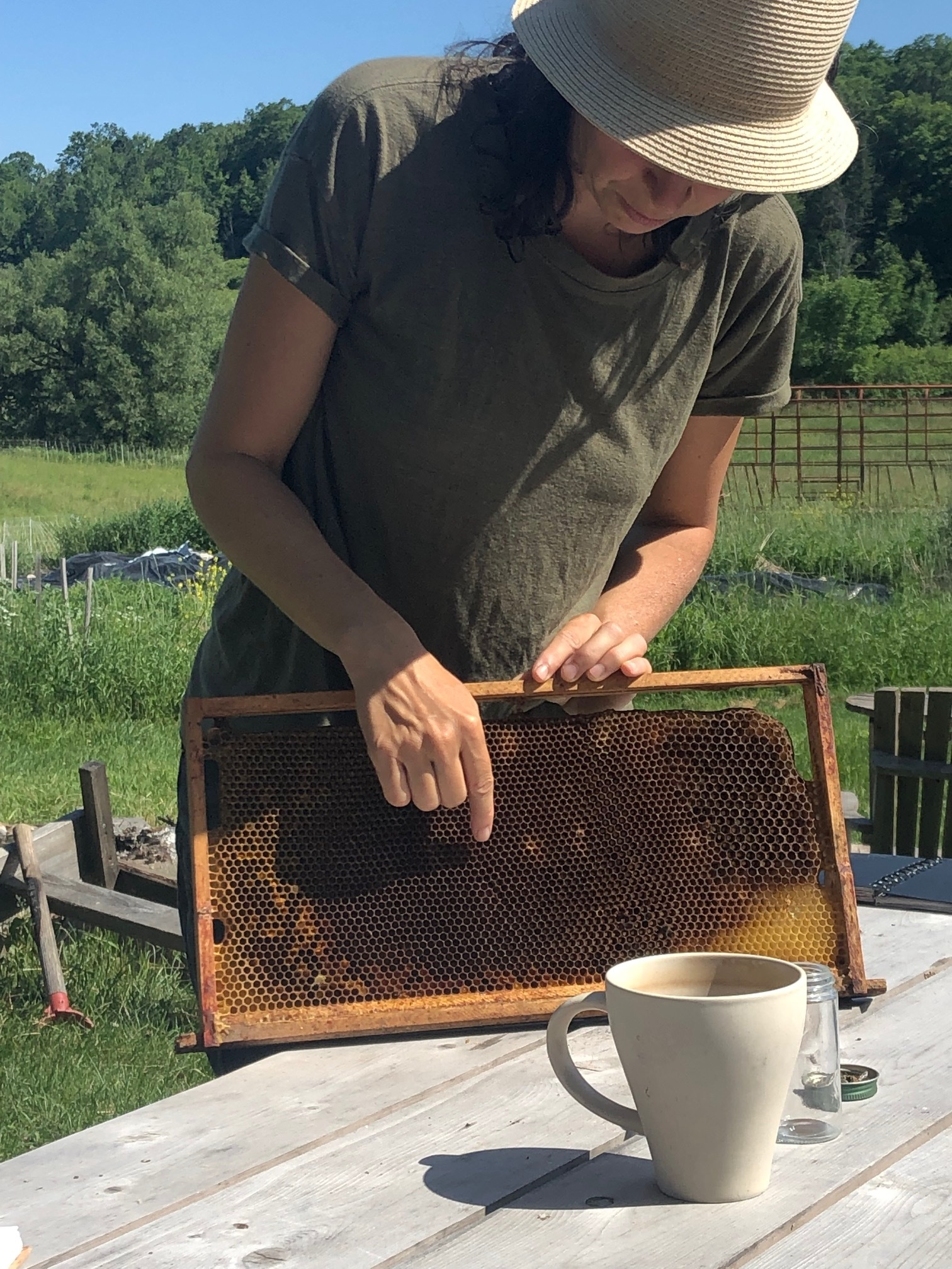 Learning about hives