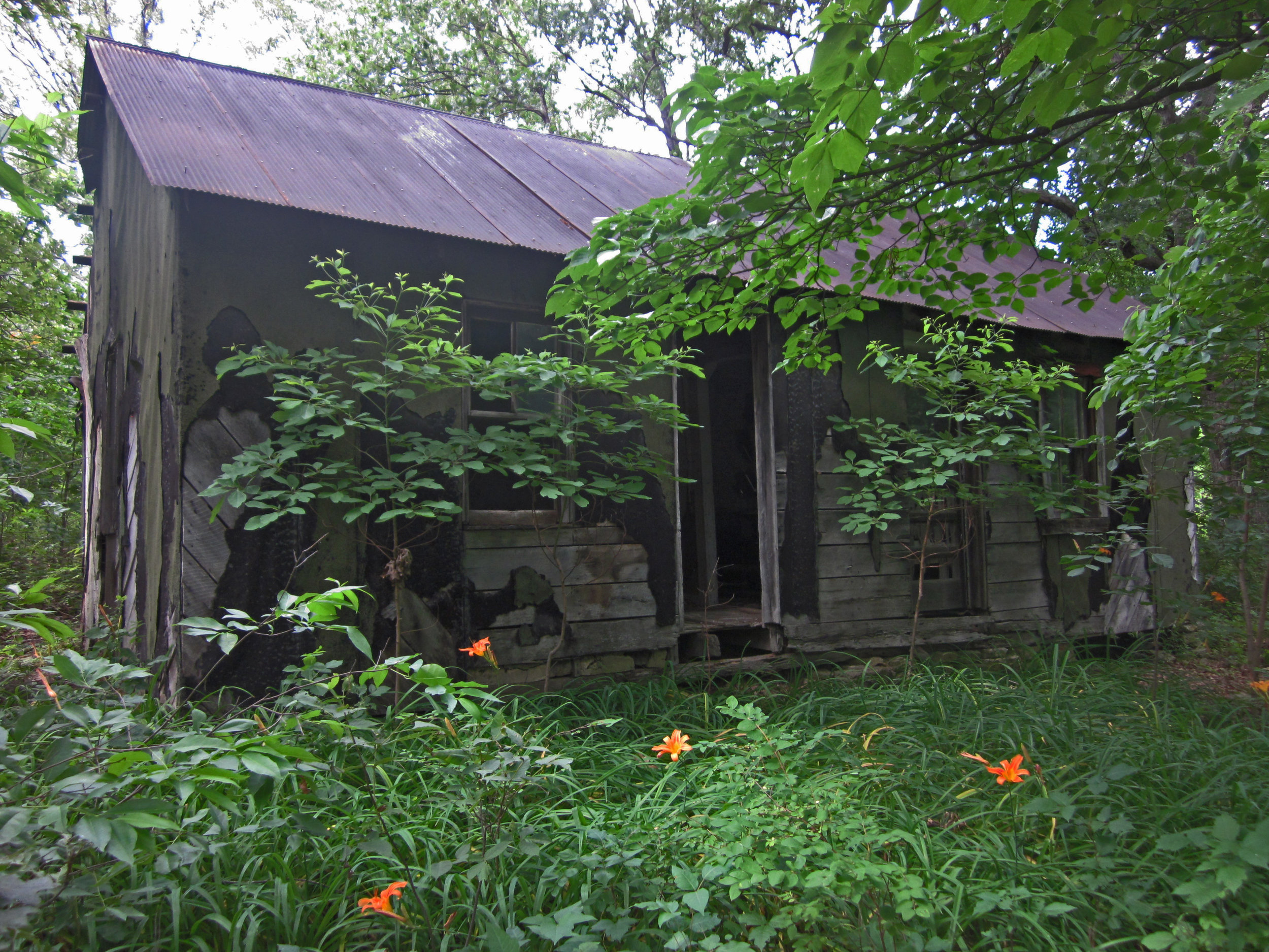 old structure in wooded area