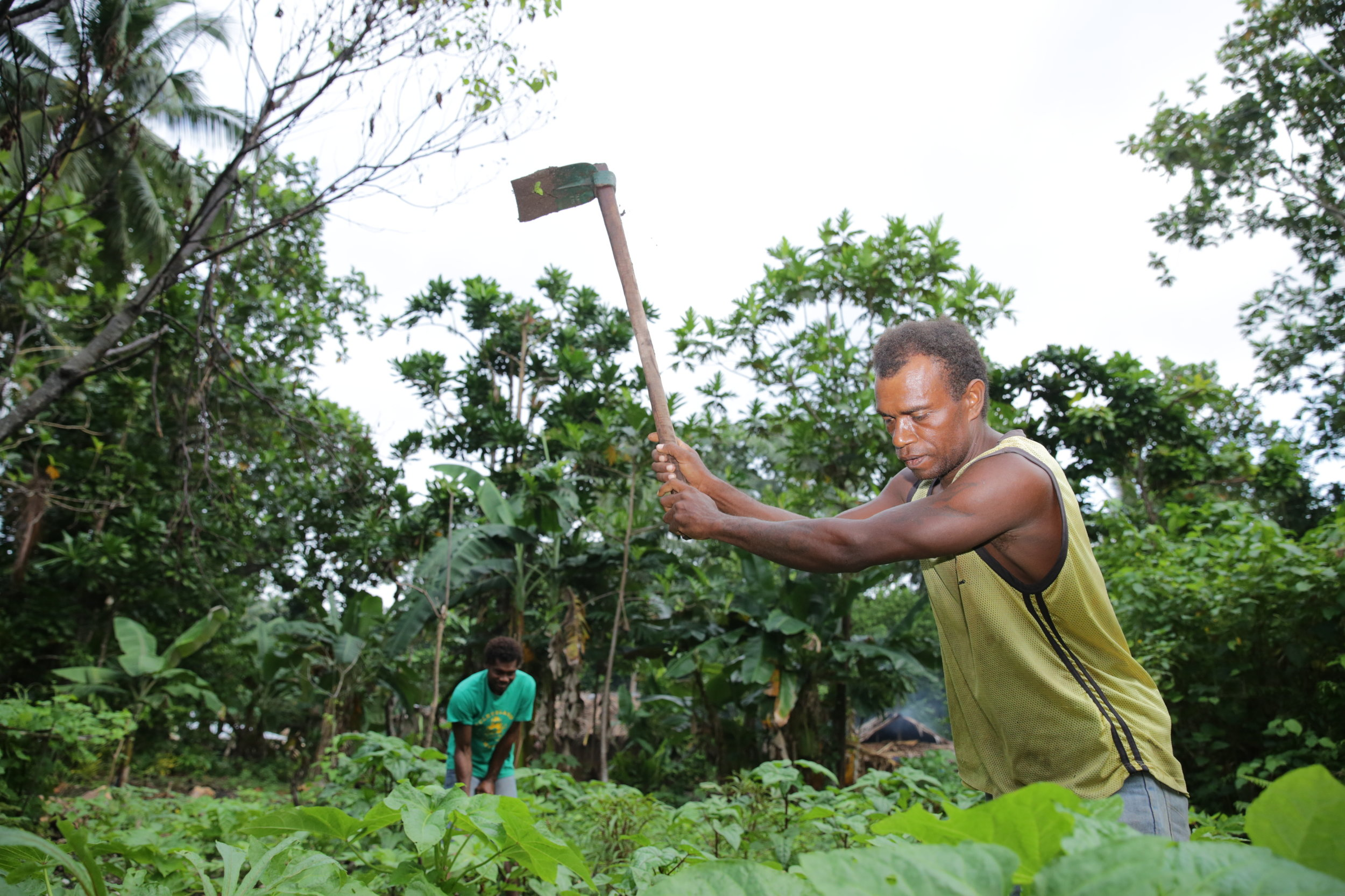 Photo caption: Jacob used to plant everything in his garden together, plants would get tangled and didn't grow well. Date: May 2017. Photo credit: © World Vision Australia.